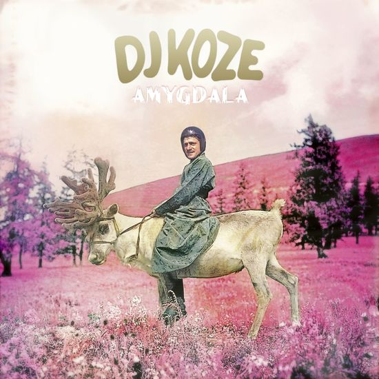 Djkoze amygdala cover kopie %281%29 preview